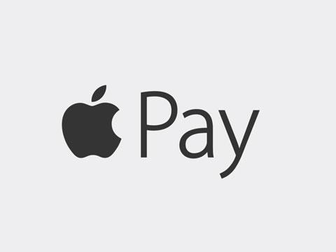 apple pay logo in grey